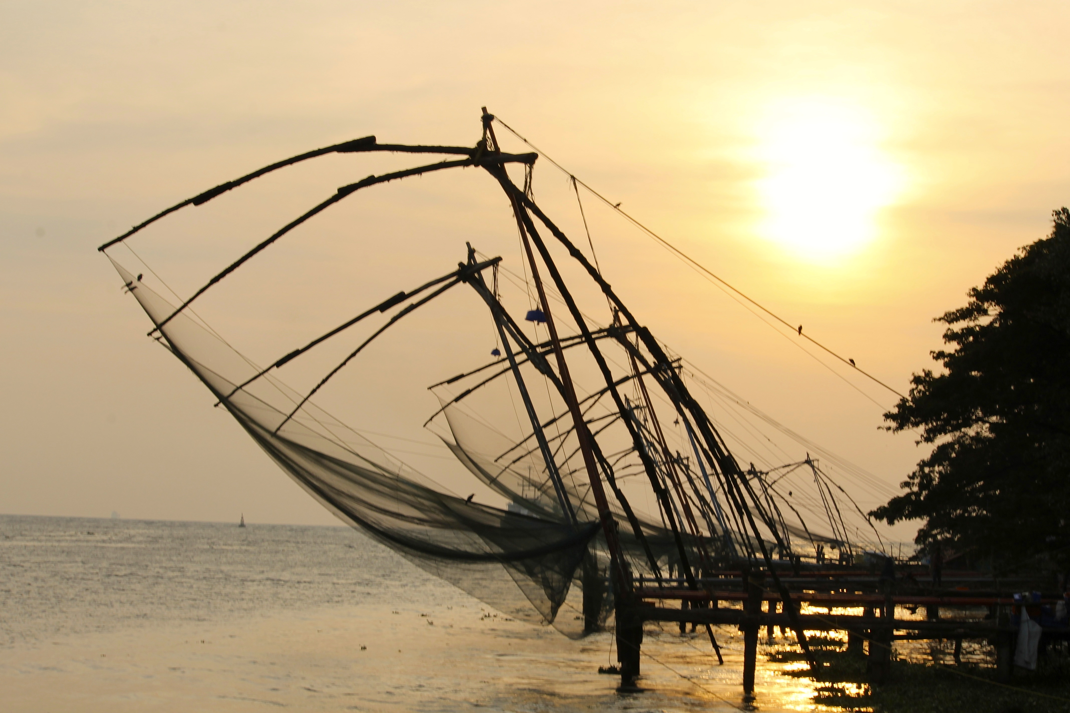The Chinese dip nets are a common sights along Kerala's coastline © Nisha D'Souza