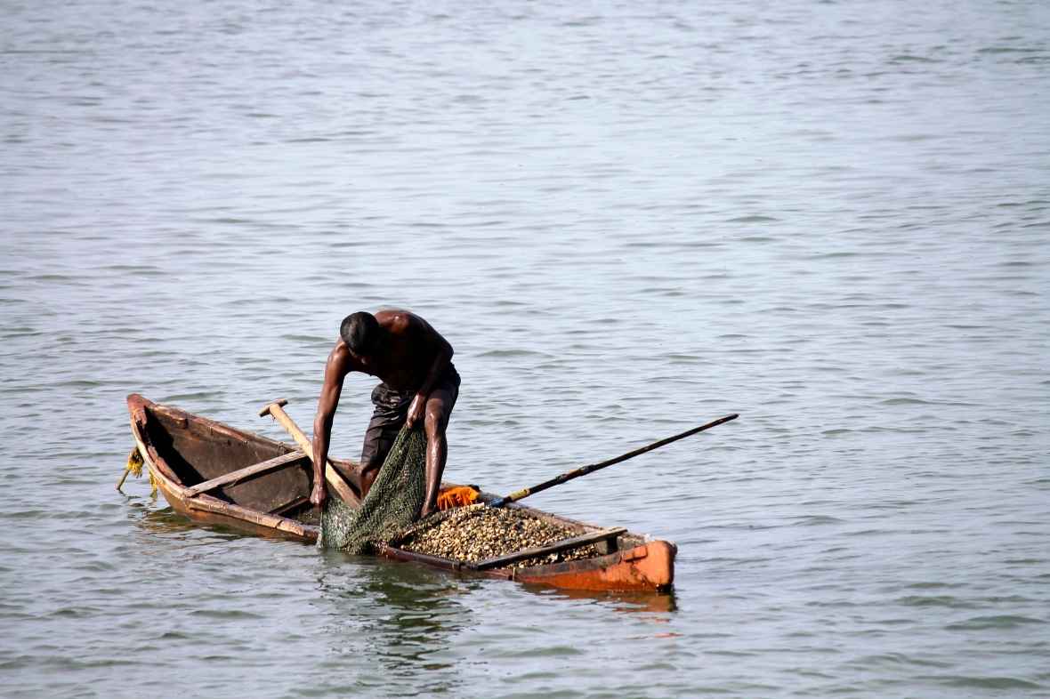 An overloaded clam fishers boat balances precariously on the calm waters © Nisha D'Souza