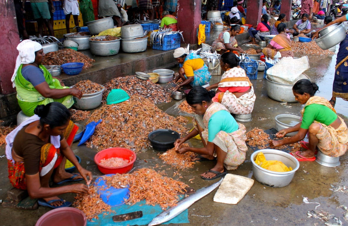 Women shell shrimp at Sakthikulangara fishing harbour © Nisha D'Souza