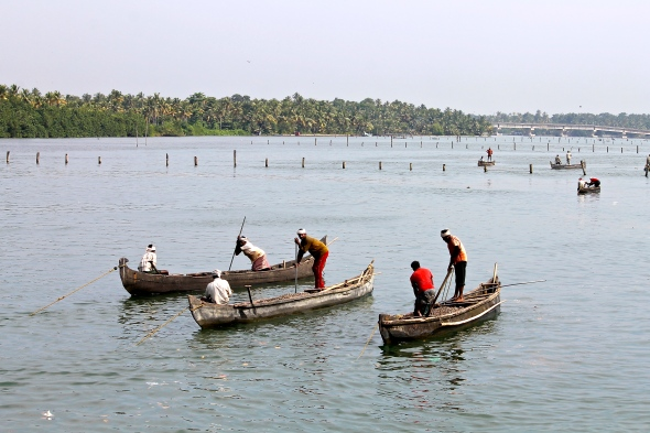 The Ashtamudi Lake dependent clam fishing industry is a popular liveilhood for hundreds of fisherfolk © Nisha D'Souza