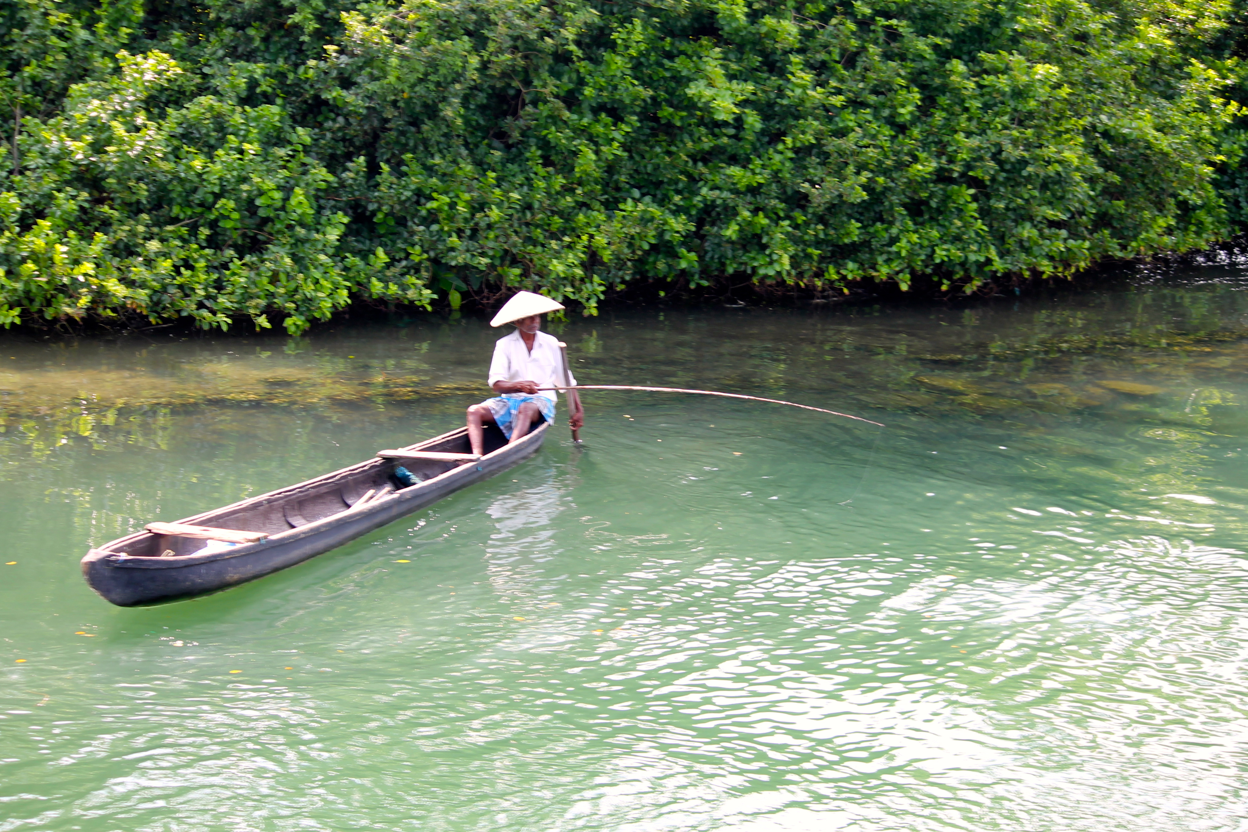 Traditional line fishing in the mangroves along the backwaters © Nisha D'Souza