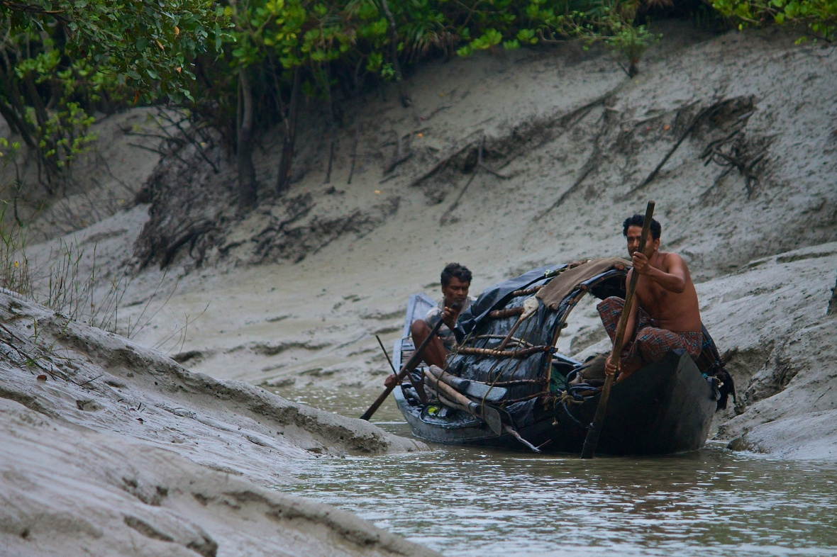 Fishermen illegaly enter the Sundarbans Tiger Reserve to fish, in danger of being attacked by tigers © Nisha D'Souza